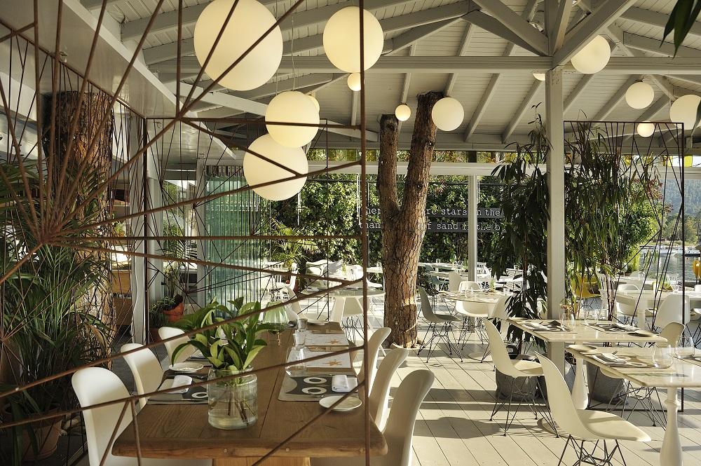cozy vibe architecture ekies