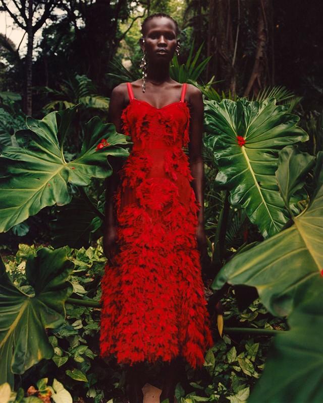 cozy vibe fashion news jungle campaign