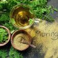 Τα φύλλα Moringa είναι το απόλυτο καλοκαιρινό superfood