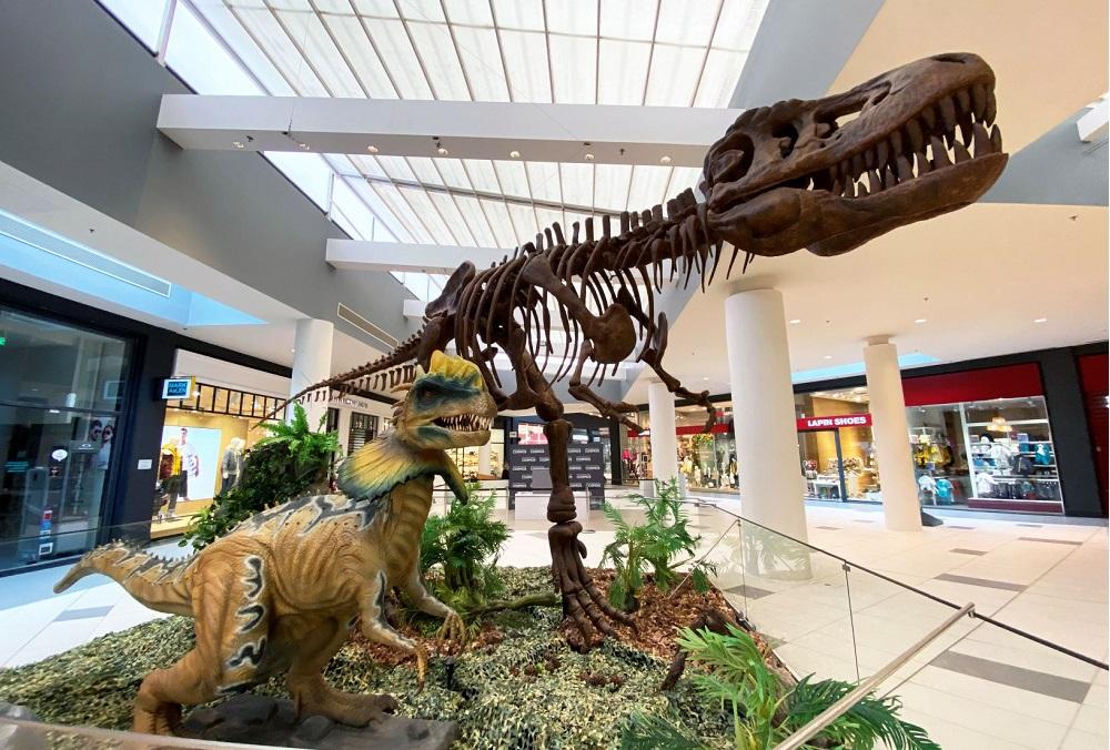 Ανακαλύψτε τον κόσμο των δεινοσαύρων στο Mediterranean Cosmos