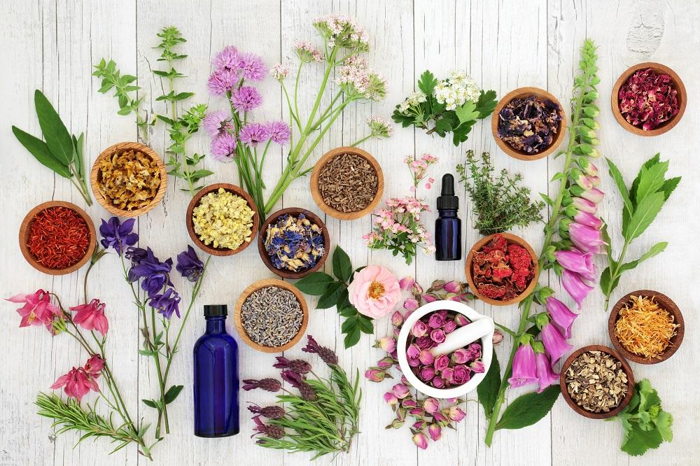 Μελισσόχορτο: Το βότανο της ευτυχίας